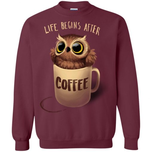 Owl Coffee Life Begins After Coffee Sweatshirt
